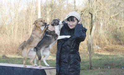 paramos beglobiams gyvunams akcija Gera daryti gera